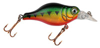 Big Belly Crankbait